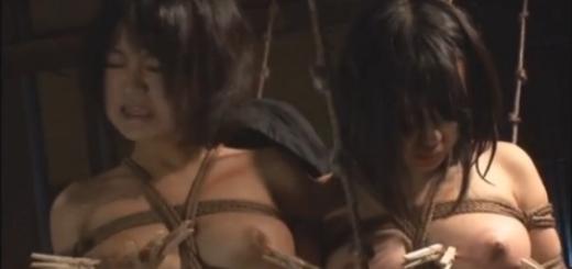 後ろ手緊縛M女2人を鞭打ちコブ縄洗濯バサミ可責め調教!【SM無料動画】