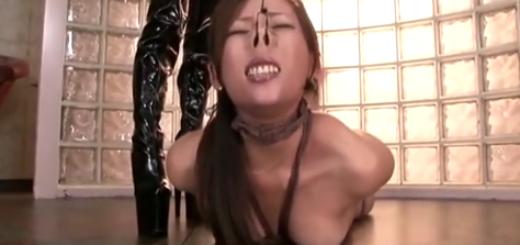刺青女王様がM女を緊縛鼻フックでエビゾリ調教!【SM無料動画】